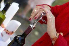 Osapuolen viinipullon korkkiruuvi avata avautuva yhteiskunta Kuvituskuvat