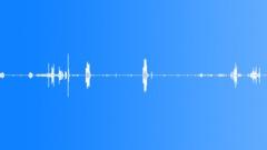 Carpenters build house Sound Effect
