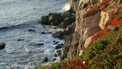 Big Sur coast sunset glow (closeup; tracking) Stock Footage
