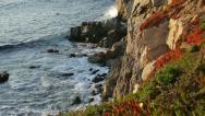 Stock Video Footage of Big Sur coast sunset glow (closeup; tracking)