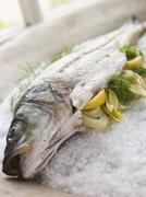 Whole Seabass Roasted in a Sea Salt Crust with Fennel - stock photo