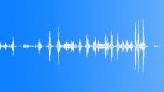 Coin silver dollar spin Sound Effect