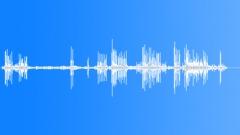 Dog show atmosphere Sound Effect