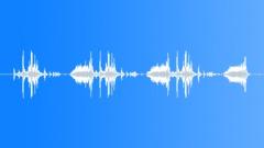 Exposure triple loset Sound Effect