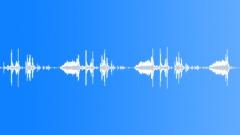 exposure triple loset - sound effect