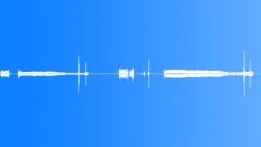Exposures delayed Sound Effect
