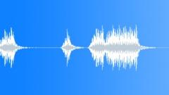 1950s car horn Sound Effect