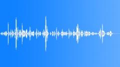 7-vuotias tyttö laulaa Äänitehoste