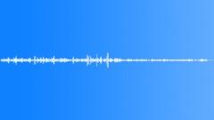 Bird ambience Sound Effect