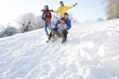 Family having fun sledging down snowy hill Stock Photos