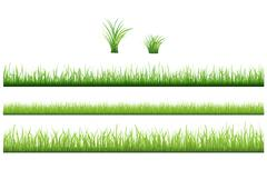 green grass collection - stock illustration