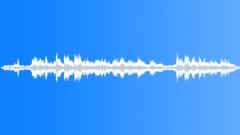 Flight announcements Sound Effect
