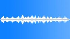 flock of blackbirds - sound effect