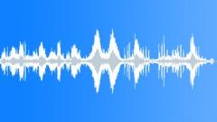 Flock of seagulls Sound Effect