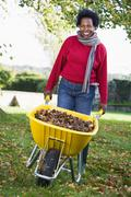 Woman outdoors with leaves in wheelbarrow smiling (selective focus) Stock Photos