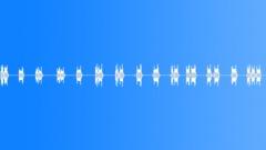 horn rabbit int - sound effect