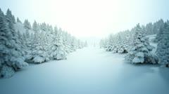 Winter snow landscape. Stock Footage