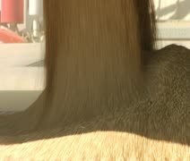 Wheat and grain flows into storage container Stock Footage