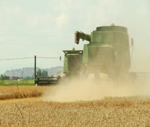 Two combines harvest wheat with dust cloud Stock Footage