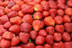 Fruit berry strawberry consumer eat economic Stock Photos