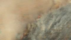 Brushfire on hillside Stock Footage