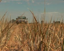 Farmer driving on his land with dog in Australia Stock Footage
