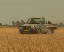 Farmer driving on his land in Australia with dog - stock footage