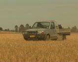Stock Video Footage of Farmer driving on his land in Australia with dog