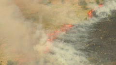 Orange flames from brushfire Stock Footage