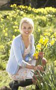 young woman picking spring daffodils - stock photo