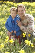 father and son on easter egg hunt in daffodil field - stock photo