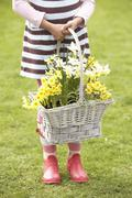 detail of girl holding basket of daffodils in garden - stock photo