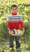 Boy on easter egg hunt in daffodil field Stock Photos