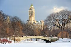 New york city manhattan central park panorama in winter Stock Photos