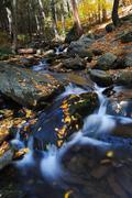 Autumn creek Stock Photos