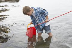 boy collecting shells - stock photo