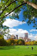 Stock Photo of new york city central park