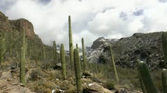 Arizona Desert Landscape Winter Time Lapse Stock Footage