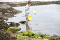 boy on beach collecting shells - stock photo