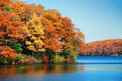 autumn foliage over lake - stock photo