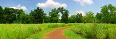 Stock Photo of quiet rural trail panorama