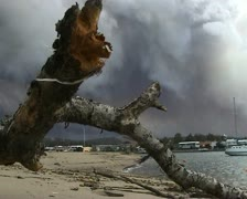 Bush fire smoke with on the coast Australia Stock Footage