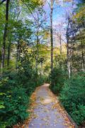 autumn hiking trail - stock photo