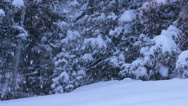 Snow Falling In the Mountains. Stock Footage