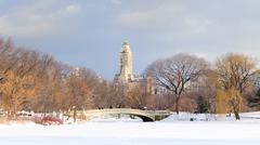 Stock Photo of new york city manhattan central park in winter