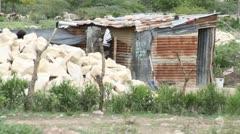 tin shack in Haiti - stock footage