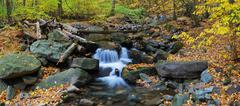 Autumn creek panorama and foliage Stock Photos