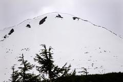 White snow mountain outline tree seward highway anchorage alaska Stock Photos