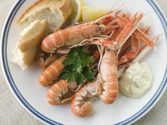Langouste with Garlic Mayonnaise Lemon and Crusty baguette Stock Photos