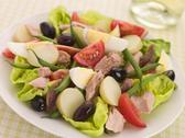 Stock Photo of Salad of Tuna Nicoise